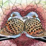 turtle-doves1